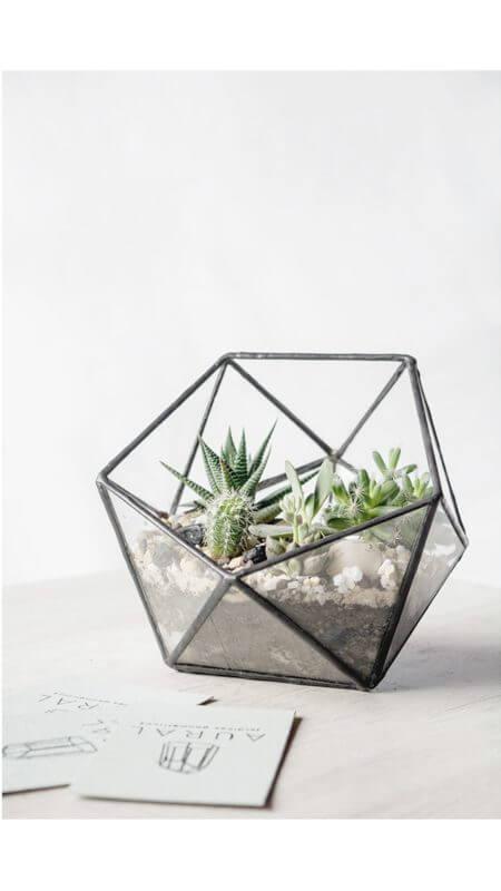 Terrario o matera esfera Eco