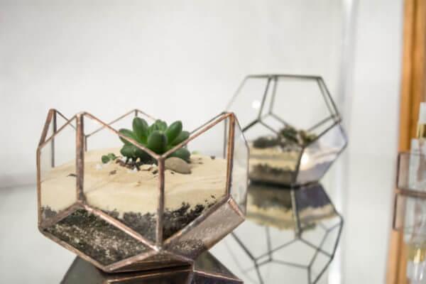Terrario geométrico loto