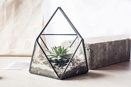 Terrario o matera piramidal Pyram