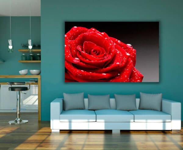 Cuadro Decorativo Rosa Roja 01