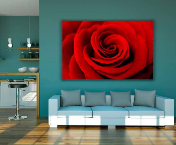 Cuadro Decorativo Rosa Roja 02
