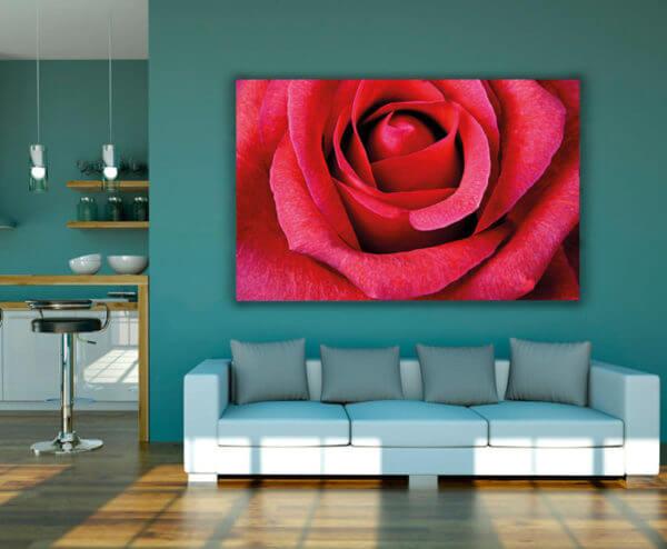 Cuadro Decorativo Rosa Roja 01 (2)