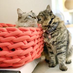 Cama para gato o perro tipo trenza color rosa