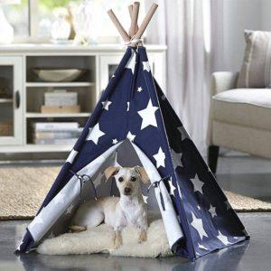 teppe mascota azul estrella ebani decoracions blancas