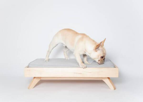 Cama talla S para perro o gato