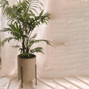 Matera de cemento Oval ebani tienda online de decoracion y mobiliario