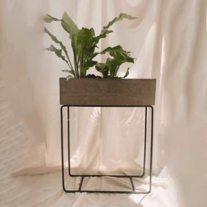 Matera de cemento emmus ebani tienda online de decoracion y mobiliario