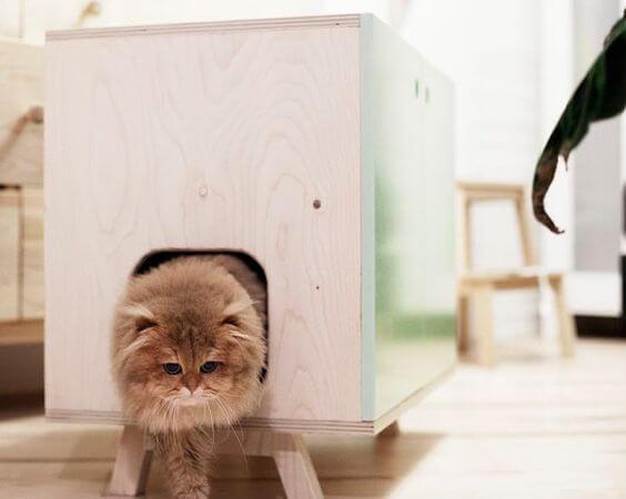 Arenero para gatos color verde menta o personalizable