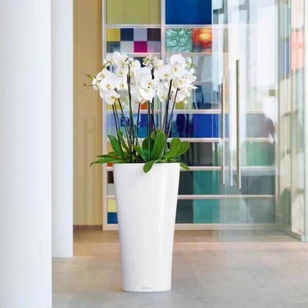 Matera de Piso Autorregante Delta 75 cm Blanco Ebani Colombia tienda online de decoración y mobiliario TUMATERA