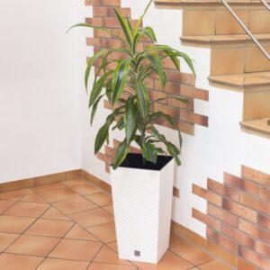Matera de Piso en Rattan Urbi 75 cm Blanco Ebani Colombia tienda online de decoración y mobiliario TUMATERA