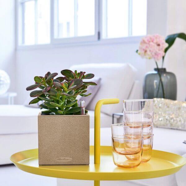 Matera de mesa Autorregante Canto 14 cm Arena Ebani Colombia tienda online de decoración y mobiliario TUMATERA