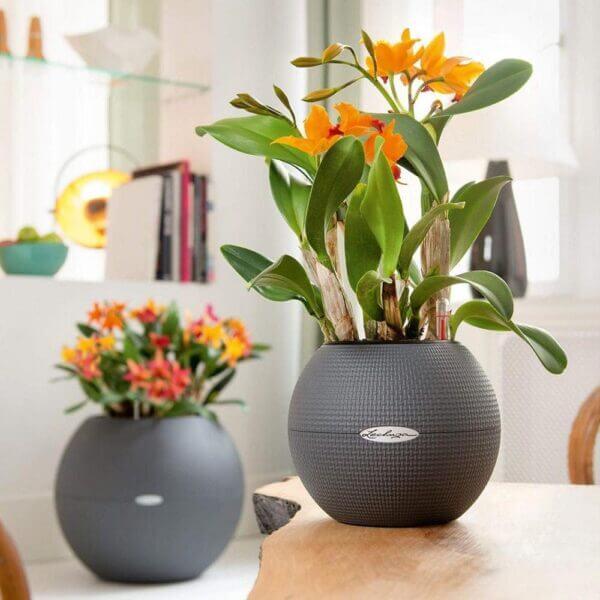 Matera de mesa Autorregante Puro 20 cm Gris Ebani Colombia tienda online de decoración y mobiliario TUMATERA