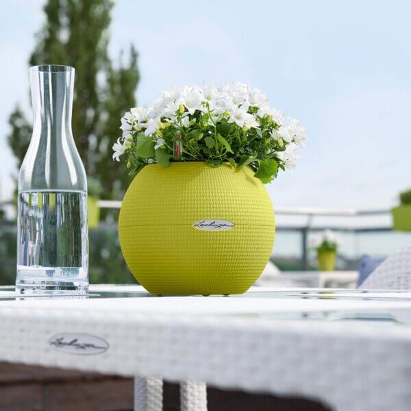 Matera de mesa Autorregante Puro 20 cm Verde Ebani Colombia tienda online de decoración y mobiliario TUMATERA