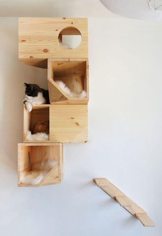 Gimnasio para gatos en madera de pino