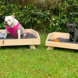 Cama Para Mascotas en madera Ebani Colombia tienda online de decoración y mobiliario Woody Pets