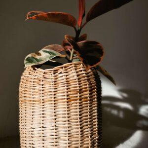 Canasta en mimbre Ally Ebani Colombia tienda online de decoración y mobiliario Madre monte
