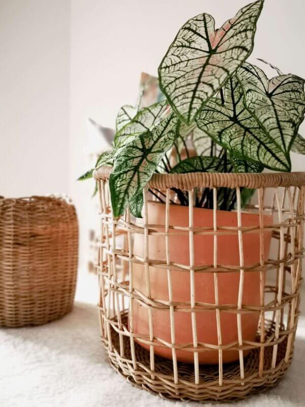 Canasta en mimbre Juana 3 Ebani Colombia tienda online de decoración y mobiliario Madre monte