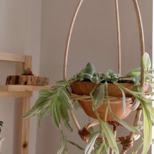 Liana Mimbre Ebani Colombia tienda online de decoración y mobiliario Madre monte