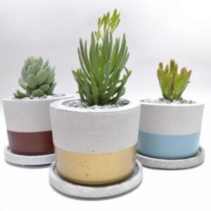 Mini materas en concreto María + base (x3 unidades) Ebani Colombia tienda online de decoración y mobiliario Ornamental