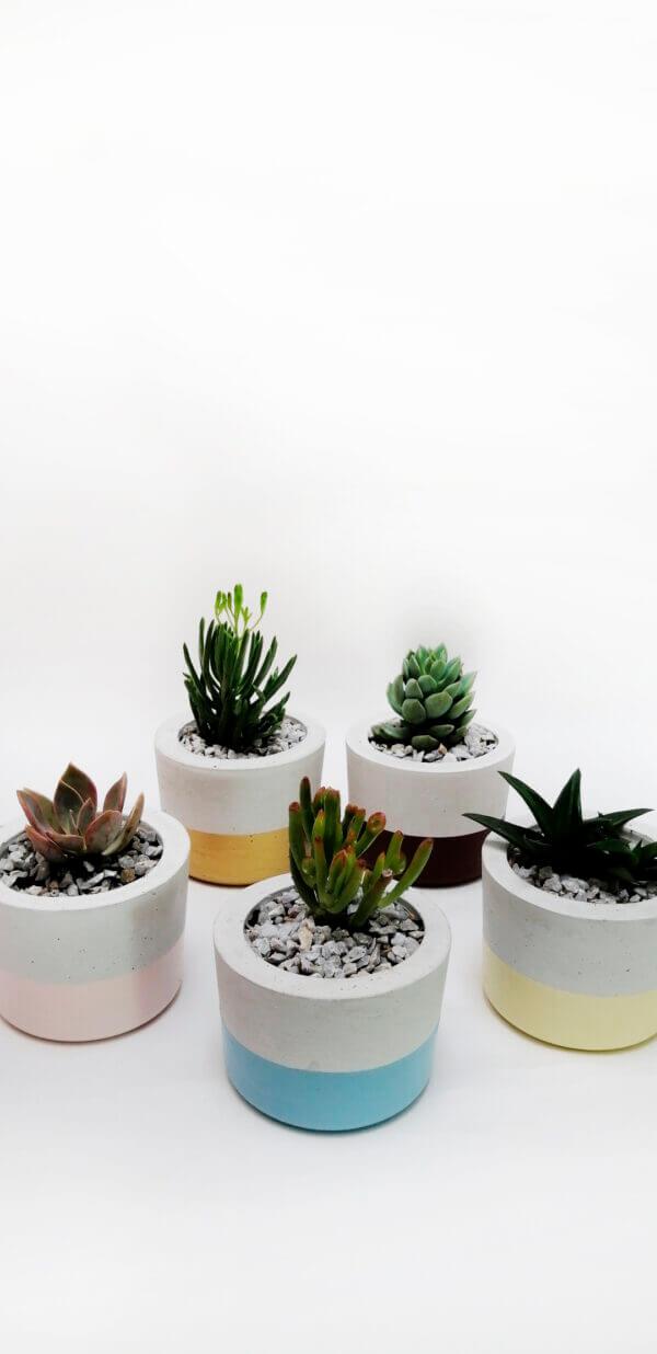 Mini materas en concreto María (x5 unidades) Ebani Colombia tienda online de decoración y mobiliario Ornamental