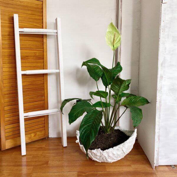 Matera de Piso Mulok white Ebani Colombia tienda online de decoración y mobiliario Cristian paredes