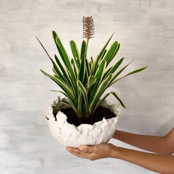 Matera de Piso Muss white Ebani Colombia tienda online de decoración y mobiliario Cristian paredes