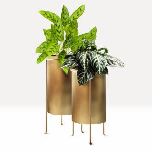 Matera de piso dorada mini Paz Ebani Colombia tienda online de decoración y mobiliario Laleti